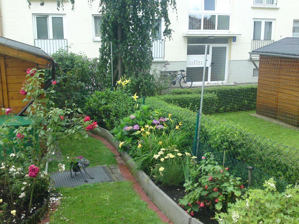 Katzennetze Garten Projekte_28
